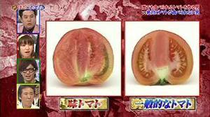 Onesegpc_20110801_23425673