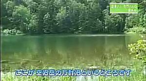 Onesegpc_20110819_23405214