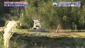 Onesegpc_20120102_13135514